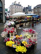 Rennes, FRANCE. Wet  Saturday, Flower Market, Marché des Lices Town hall square Rennes Old quarter, Brittany.<br /> <br /> Saturday  04/04/2009<br /> <br /> [Mandatory Credit;odd-Stock.com ]<br /> NIKON - COOLPIX P6000 - 1/160 - f4.1  5.6MB MB