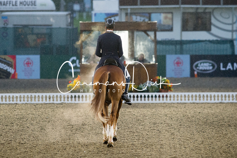 Sune Hansen, (DEN), Charmeur<br /> CDI3* Grand Prix <br /> Royal Windsor Horse Show - Windsor 2015<br /> &copy; Hippo Foto - Jon Stroud