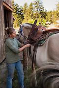 Woman brushng horse