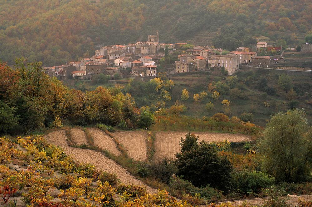 France, Languedoc Roussillon, Gard (30), Cevennes, Saint Martial