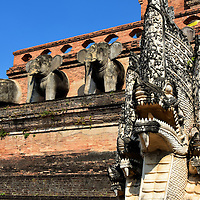 Elephants and Naga on Chedi at Wat Chedi Luang in Chiang Mai, Thailand <br /> It took over 84 years to build the Temple of the Big Stupa which is the English translation for Wat Chedi Luang in Chiang Mai.  When the chedi was finished in 1475, it had the honor of housing the Emerald Buddha before this holy image named Phra Kaew was moved in 1551 to Luang Prabang in Laos. It is now at the Grand Palace in Bangkok. Still guarding the southern staircase is a row of elephant sculptures and a seven-headed nāga statue.