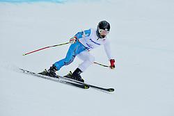 Jae Rim Yang, Women's Giant Slalom at the 2014 Sochi Winter Paralympic Games, Russia
