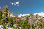 The view along the John Muir Trail, north of Reds Meadow, Ansel Adams Wilderness, Inyo National Forest, Sierra Nevada Mountains, California, USA.