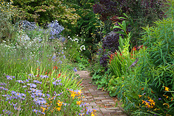Hot beds in mid August at Glebe Cottage. Asters, gladiolus, crocosmia