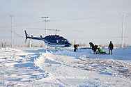 01874-11801 Polar Bear (Ursus maritimus) biologists preparing to airlift bear from Polar Bear Compound, Churchill MB