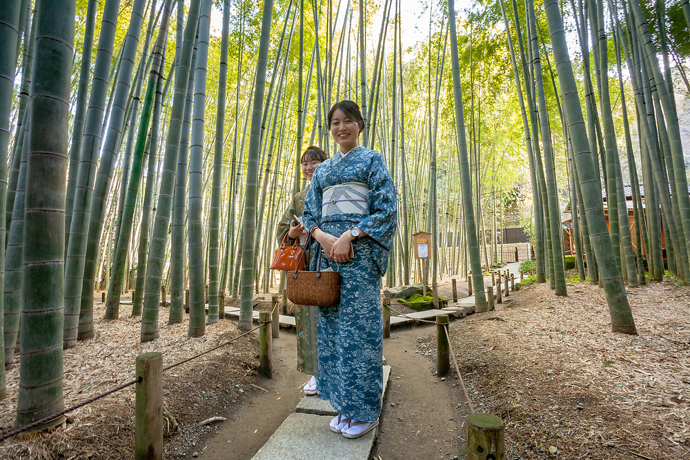 Two women tourists in traditional kimono explore the bamboo forest behind Hokokuji Temple, Kamakura, Kanagawa, Japan. Thursday March 5th 2020