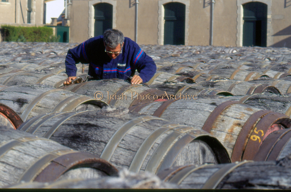 France, Languedoc and Roussillon. Noilly-Prat, barrels in yard.
