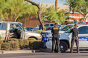 13 MAY 2012 - PHOENIX, AZ: Phoenix police make an arrest on 16th Street near Roosevelt St.     PHOTO BY JACK KURTZ