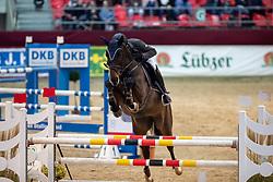 BRANDT Thomas (GER), Laviata<br /> Neustadt-Dosse - CSI 2019<br /> 2. Qualifikation Youngster Tour für 7 und 8 jährige Pferde<br /> 11. Januar 2019<br /> © www.sportfotos-lafrentz.de/Stefan Lafrentz