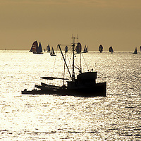 Canada, British Columbia, Vancouver, Fishing trawler passes sailboats filling Burrard Inlet at sunset on summer evening