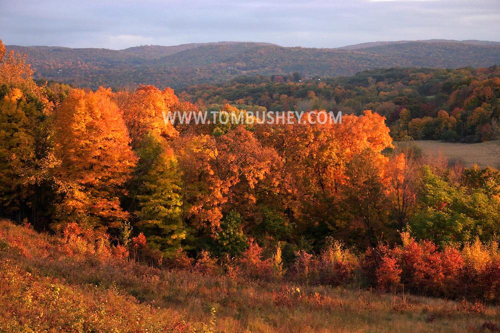 Autumn scenics in Craigsville and Salisbury Mills. Moodna Viaduct.Oct. 24, 2004.