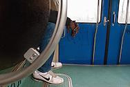 Immigrato sul treno locale tra Roma e Nettuno