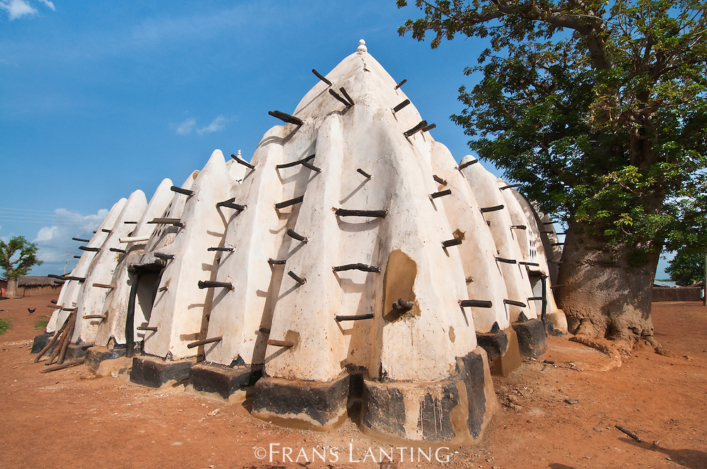 Ancient mosque, Larabanga, Ghana