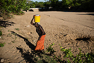 Zimbabwe, Action Aid,<br /> Ghaisheni Makuyana (73) is collecting water from the dryed riverbed. She comes here every day to get water by a small hole that she dicks in the riverbed. &quot;I am to old to walk that far to the borehole to fetch water, so I come here every day to get water. I live together with my granddaughter, but she is to young to fetch water. My sons don&acute;t work and don&acute;t help me, so i beak other people to help me.&quot;