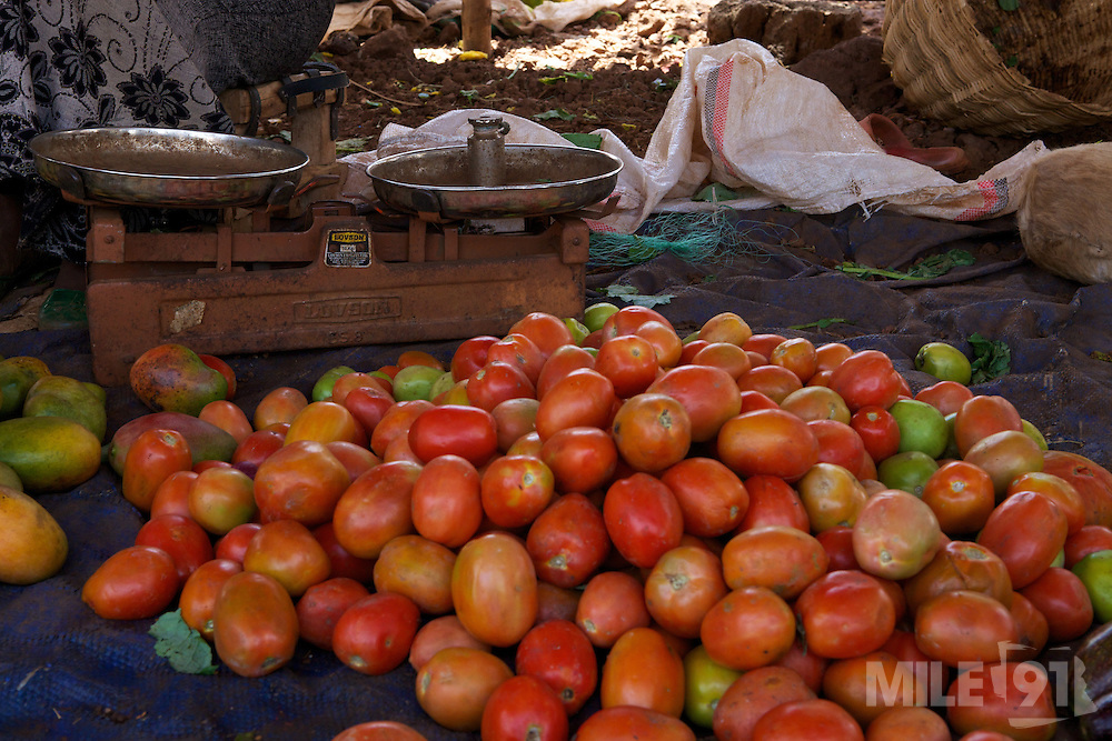 Fresh tomatoes being sold in a local market in Finote Selam, Ethiopia.