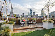 Roof terrace with astro turf, London skyline