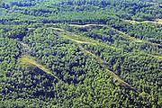 Forest <br /> Peace River <br /> Alberta<br /> Canada