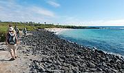 The rocky shoreline and beach on the island of  Santa Fe (Barrington), Galapagos.
