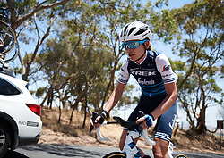 Tayler Wiles (USA) battles up the final climb at Santos Women's Tour Down Under 2019 - Stage 2, a 116.7 km road race from Nuriootpa to Angaston, Australia on January 11, 2019. Photo by Sean Robinson/velofocus.com