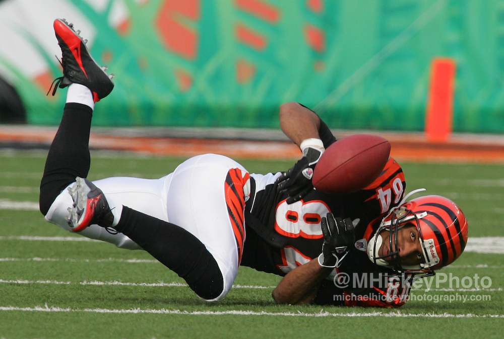 Cincinnati Bengals wide receiver TJ Houshmandzadeh loses the handle on the football during action against the Buffalo Bills Dec 24, 2005. The Bills defeated the Bengals 37-27.