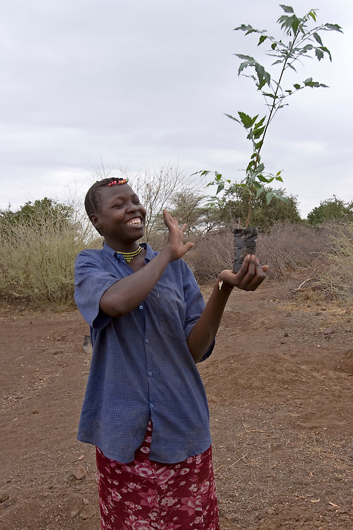 A woman with a sapling, ready for planting in the village of Kakelae. Tree planting is part of an Oxfam Cash for Work scheme set up in the Turkana region of Northern Kenya. Trees are used for food, animal fodder and shade from the sun.  Climate change in the Northern Kenya region is having a huge impact on these traditionally nomadic pastoralist's, with droughts happening more frequently and for longer durations. With the help of various charities and the Kenyan government they are finding ways to maintain food security.