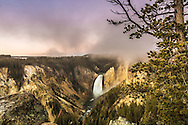 A steamy foggy sunrise at Lower Yellowstone falls in Yellowstone National Park
