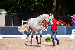 Ahlmann Christian, GER, Clintrexo Z<br /> European Championship Jumpîng<br /> Rotterdam 2019<br /> © Hippo Foto - Dirk Caremans<br /> Ahlmann Christian, GER, Clintrexo Z
