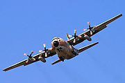 5 Israeli Air force Hercules 100 transport plane in flight