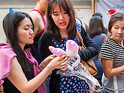 31 DECEMBER 2013 - BANGKOK, THAILAND: Woman buy illuminated bunny ears on New Year's Eve in Bangkok. Hundreds of thousands of people pack into the Ratchaprasong Intersection in Bangkok for the city's annual New Year's Eve countdown. Many Thais go the Erawan Shrine and Wat Pathum Wanaram near the intersection to pray and make merit.     PHOTO BY JACK KURTZ