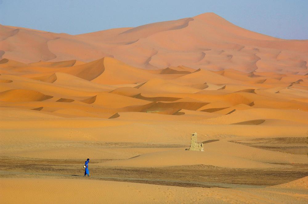 Camels, Sand Dunes, Erg Chebbi,  Merzouga, Morocco