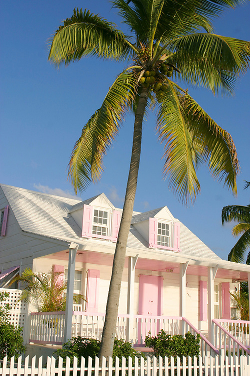 pink house and palm trees in the Bahamas