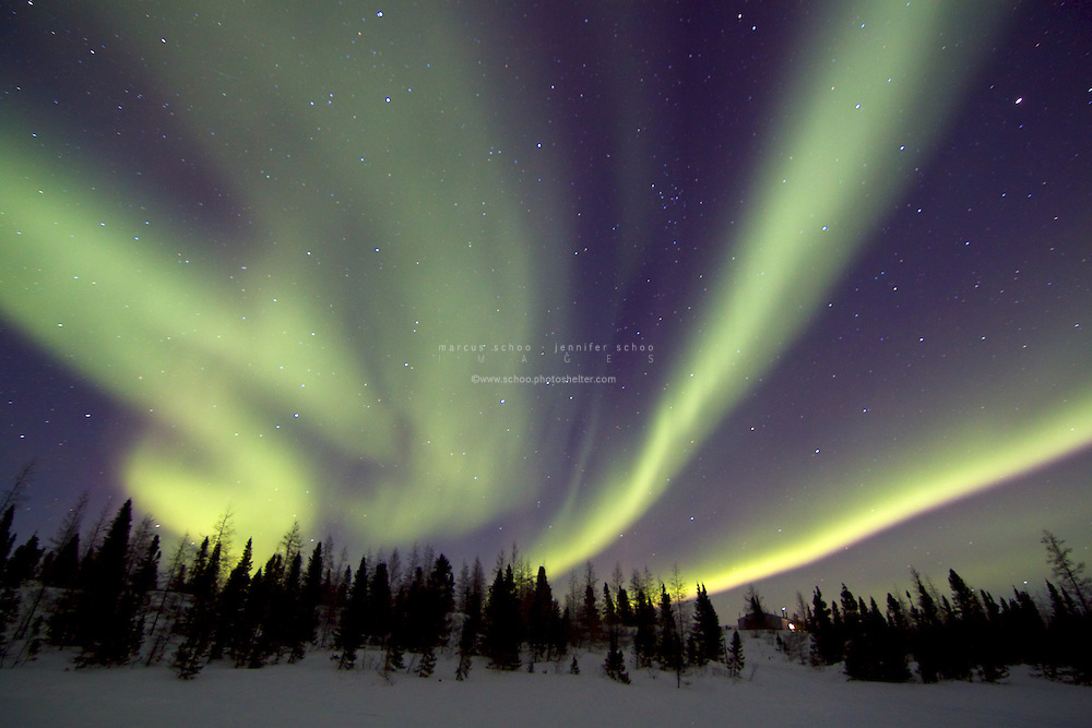 Aurora borealis (or the northern lights) is the name given to the stunning light display that occurs in the sky in an oval around the magnetic north pole. The green light is produced when energy is released after ions from solar flares entering the earths atmosphere have collided with oxygen in the upper atmosphere and are pulled toward the pole by the earths magnetic field. This display dances above Wapusk National Park in northern Manitoba, Canada.