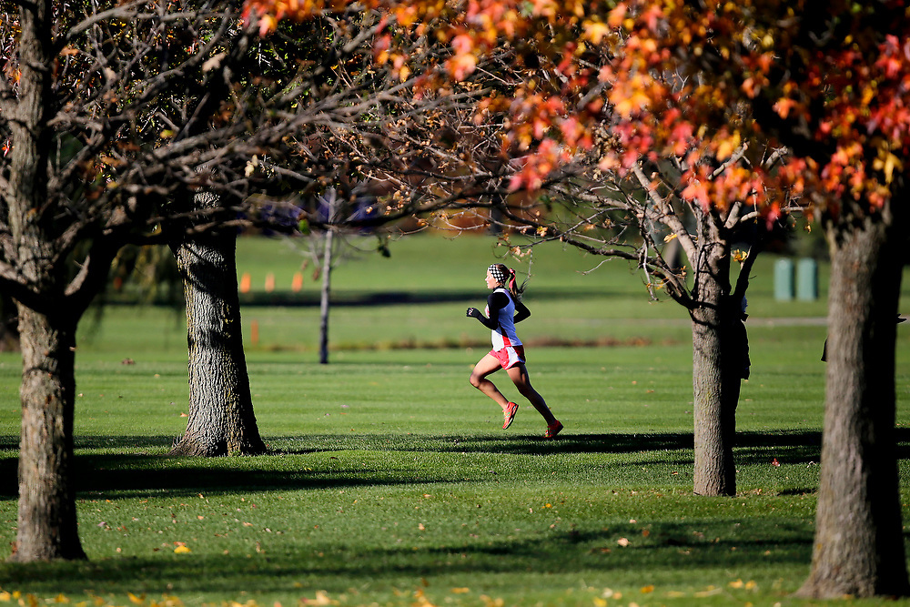 Mt. Zion's Megan Bailey (613) runs during the IHSA Class 1A cross country sectional at Hickory Point Saturday, Nov. 1, 2014, in Forsyth, Ill. (For the Herald & Review/ Stephen Haas)