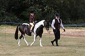 Class 37 - Lead Rein Pony