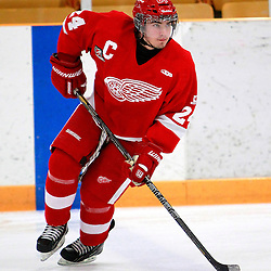 Hamilton Red Wings 2013-2014