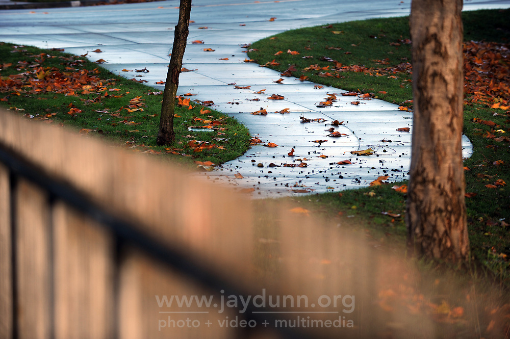 Early light bathes a fence and sidewalks in Creekbridge after a rainy evening.