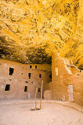 Spruce Tree House, Mesa Verde, ladder