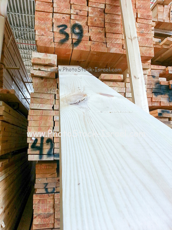 Pine wood planks in a Lumber yard