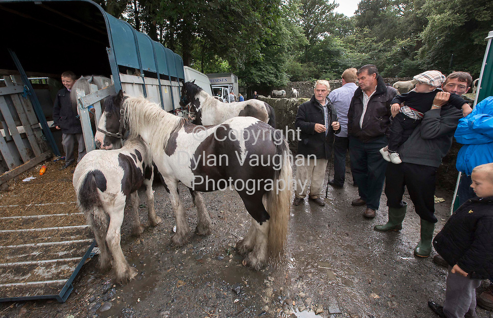 15/7/2012.Horses being traded at the Borris Horse Fair in County Carlow yesterday...Picture Dylan Vaughan