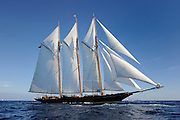France Saint - Tropez October 2013, Classic Yachts racing at the Voiles de Saint - Tropez<br /> C,CAG,SHENANDOAH OF SARK,54,GOELETTE AURIQUE/1902,T.E TERRIS
