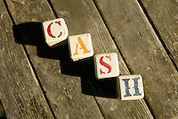 3 September 2010:  baby blocks spelling out the name Cash on wood.