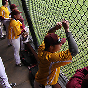 St. Elizabeth Outfielder Michael Ricci (4) cheers for his teammates from the dugout during of a varsity scheduled game between the Colonials of William Penn and The St. Elizabeth Vikings Saturday, April 25, 2015, at William Penn High School baseball field in New Castle Delaware.<br /> <br /> William Penn defeats St. Elizabeth 6-5