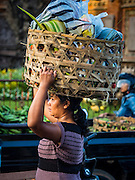 11 OCTOBER 2016 - UBUD, BALI, INDONESIA:  A woman carries her market purchases down on Jalan (Street) Raya Ubud as she leaves the morning market. The morning market in Ubud is for produce and meat and serves local people from about 4:30 AM until about 7:30 AM. As the morning progresses the local vendors pack up and leave and vendors selling tourist curios move in. By about 8:30 AM the market is mostly a tourist market selling curios to tourists. Ubud is Bali's art and cultural center.     PHOTO BY JACK KURTZ