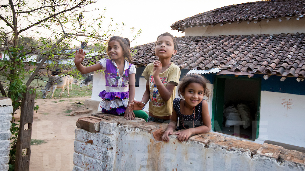 India Spring Break, Kanha,  John Kelly photo