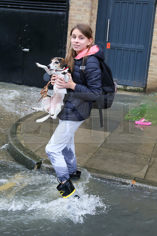 © Licensed to London News Pictures. 08/10/2019. London, UK. A girl holds a dog in Theobalds Court following a burst water main on Brownswood Road in Finsbury Park, north London. Photo credit: Dinendra Haria/LNP