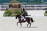 Gareth Hughes - DV Stenkjers Nadonna, Jury at H Joanne Graham<br /> Test Event WEG Normandie 2014<br /> © DigiShots