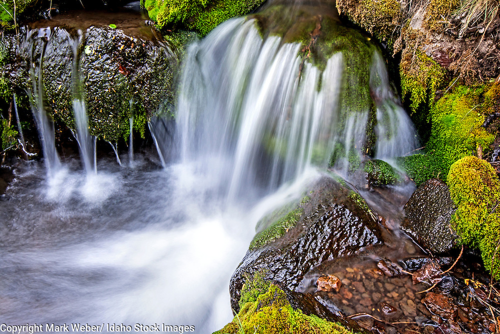 Goose Creek Mountains, Wooden Shoe Creek cascades over mossy boulders and rocks in the Goose Creek Mountains in southern Idaho