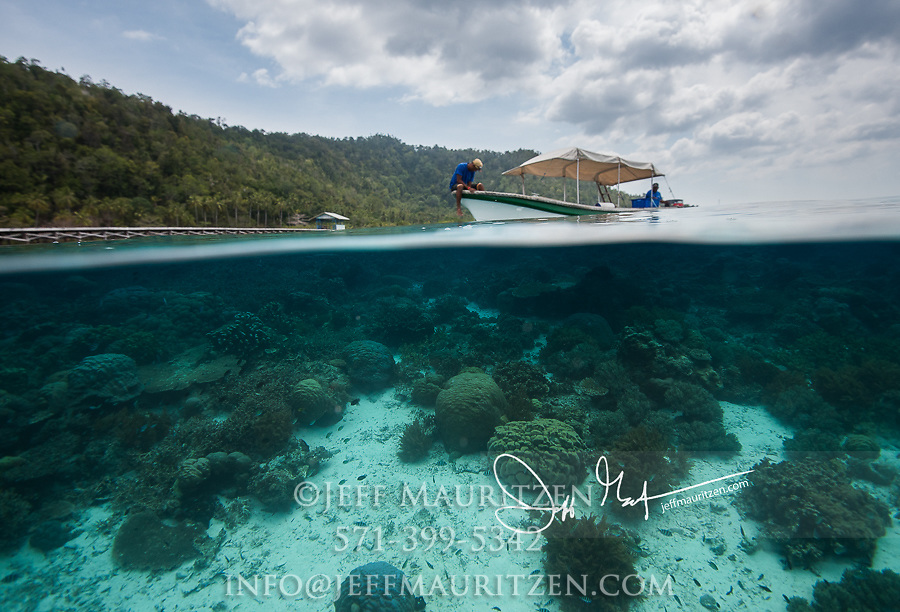 Over-under view of the biodiverse tropical marine environment of Raja Ampat, Indonesia.