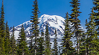 A partly hidden view of Mount Rainier, Mount Rainier National Park, Washington, USA.