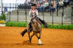 Poels Ann, BEL, Made In Walla<br /> World Equestrian Games - Tryon 2018<br /> © Hippo Foto - Dirk Caremans<br /> 12/09/2018